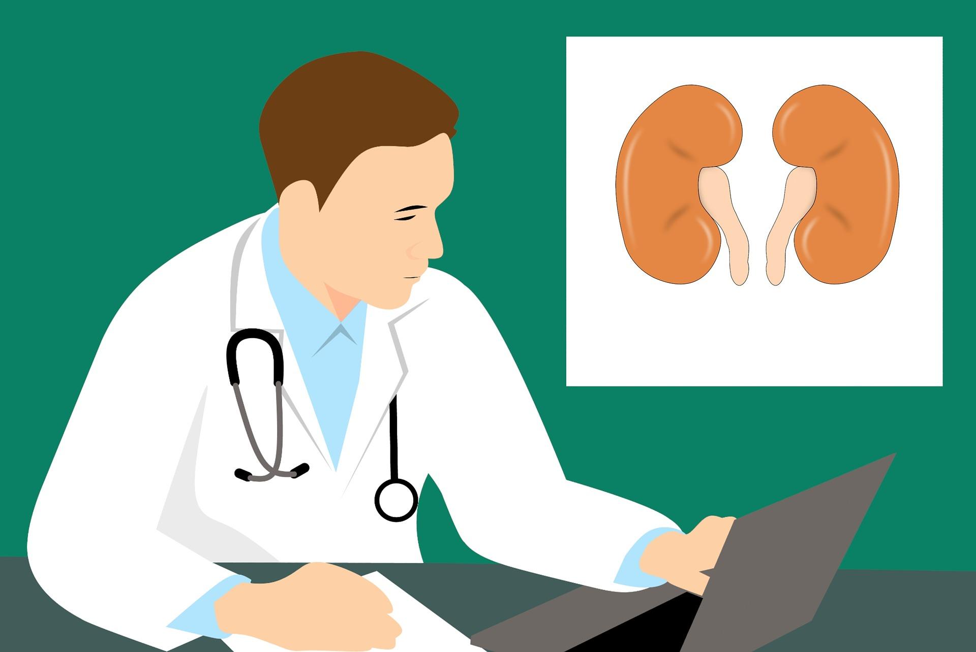 Kidney transplant India