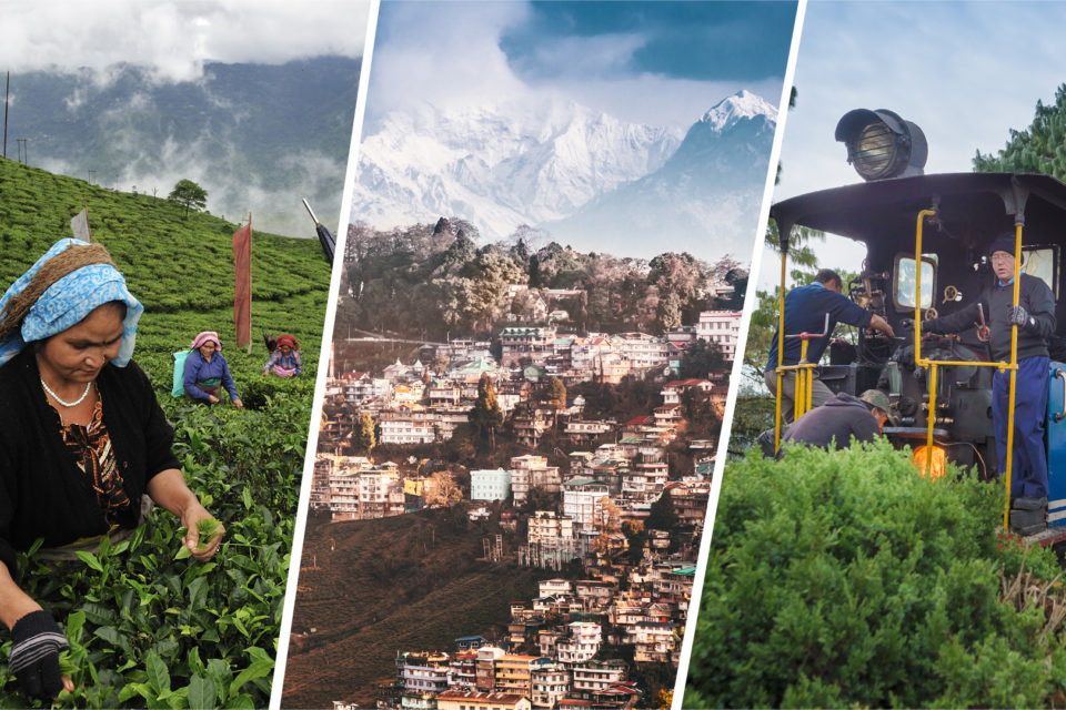 Darjeeling Trip Guide Covering Unique Places To Visit After The COVID-19 Pandemic