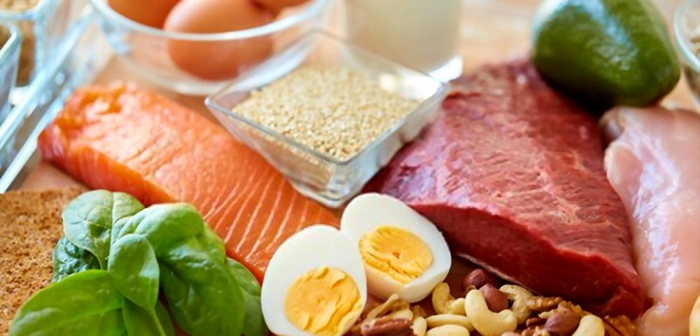 Protein - Ibandhu
